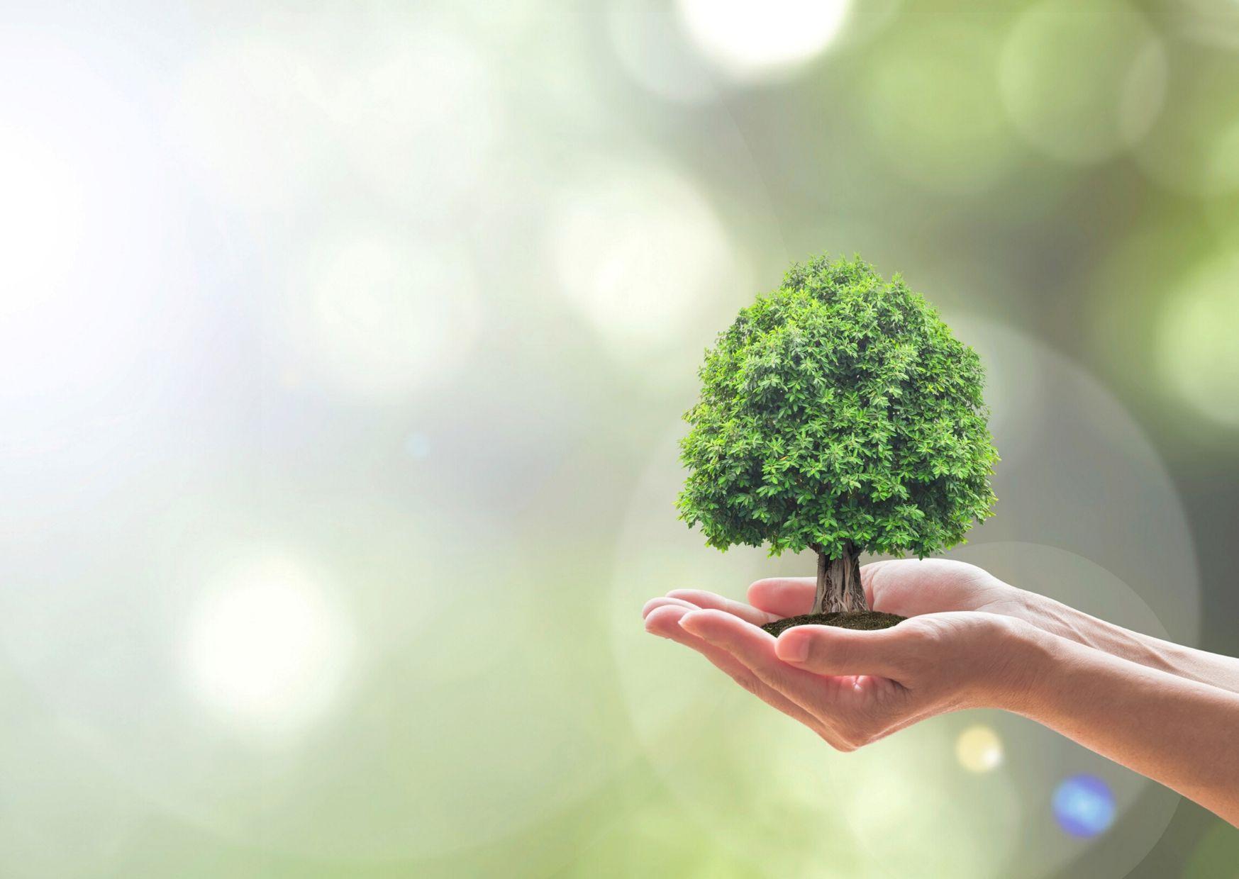 conceptos clave para una moda sostenible